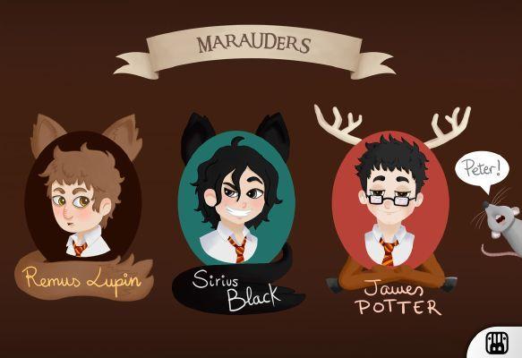 Girl Marauder Sirius Black Love Story Chapter 3 The Marauders Harry Potter Fan Art Marauders Fan Art