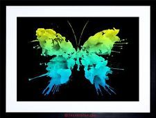 PAINTING ILLUSTRATION PAINT SPLASH BUTTERFLY SPLAT FRAMED PRINT F12X4762