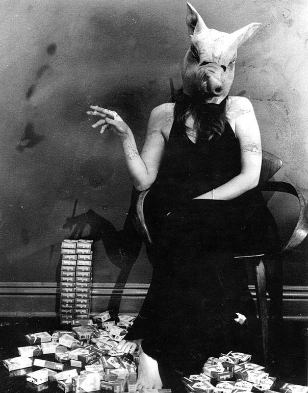 """Saatchi Online Artist: curran clark; Black & White, Photography """"PIG"""""""