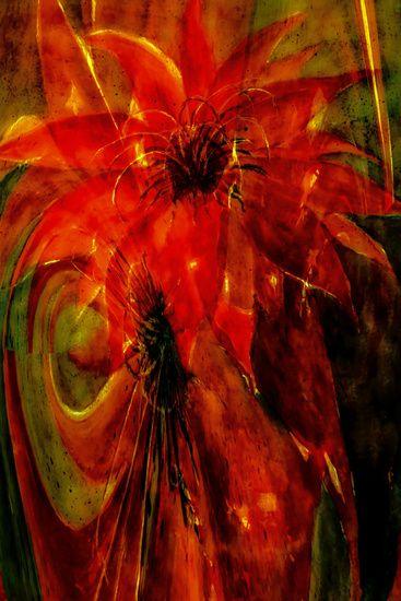 Neu in meiner Galerie bei OhMyPrints: Ph�nix - Kaktusbl�te abstrakt