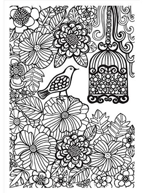 Floral Garden Birdcage Coloring Page For Adults