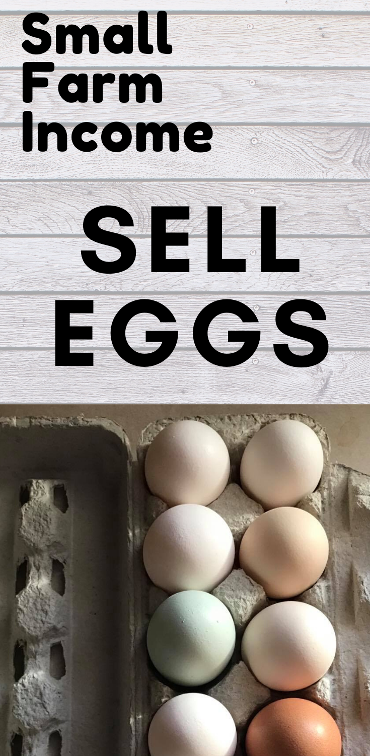How To Sell Your Farm Eggs Eggs Selling Eggs Eggs For Sale