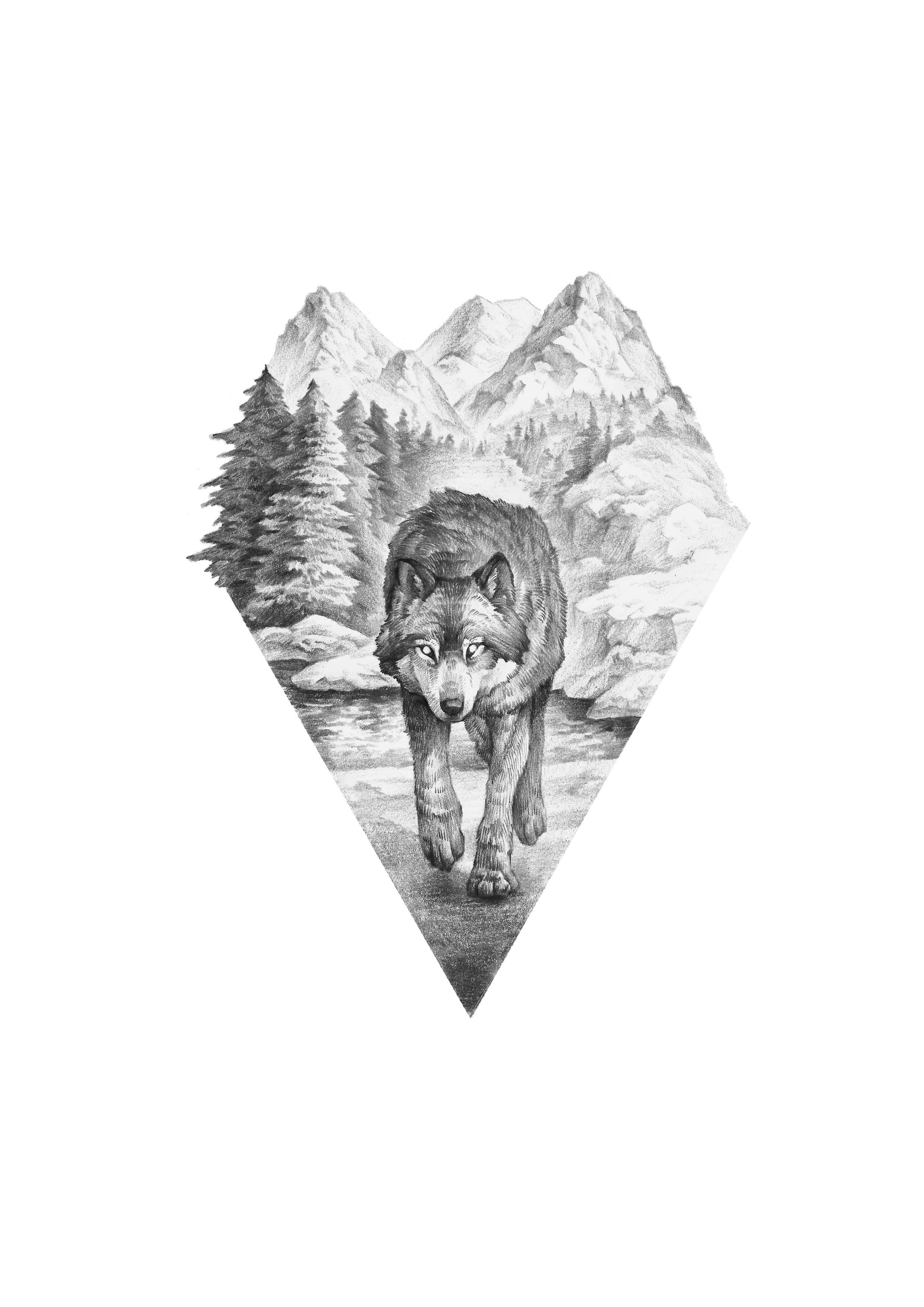 Photo of wolf and forest