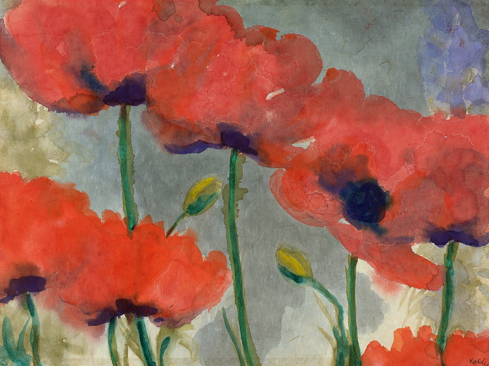 Nolde S Poppies Kunst Blumen
