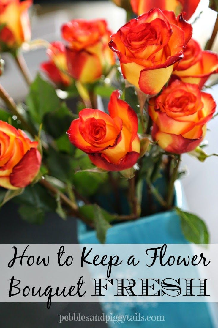 How To Keep A Flower Bouquet Fresh   Flower bouquets, Flower and Flowers