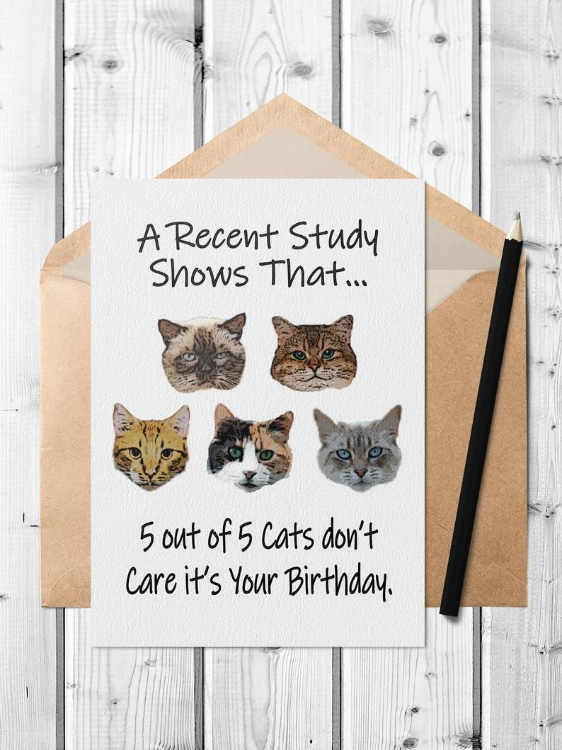 Funny Cat Printable Birthday Card With Free A7 Envelope Template Print Your Own Pdf Birthday Card For Cat Owners Birthday Card Printable Funny Printable Birthday Cards Birthday Cards