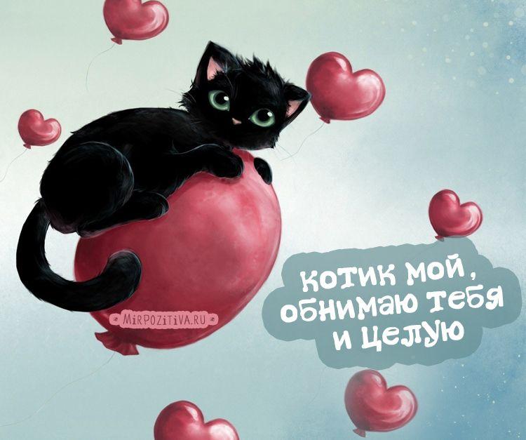 Зеленой свадьбой, открытки я тебя люблю котик