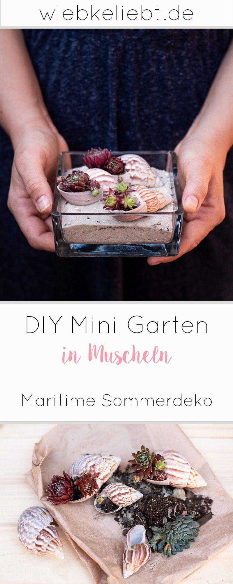 Photo of DIY minihage i skjell – sommerdekorasjon med sukkulenter   DIY-blogg   Gjør-det-selv-instruksjoner for å gjøre det selv-elsket det