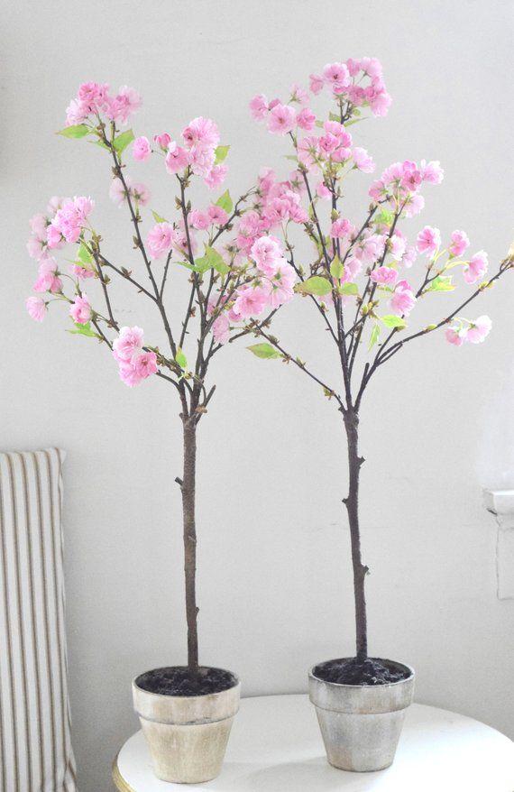 Sakura Pink Japanese Cherry Blossom Tree In Rustic Pot Etsy In 2021 Cherry Blossom Tree Japanese Cherry Blossom Japanese Cherry