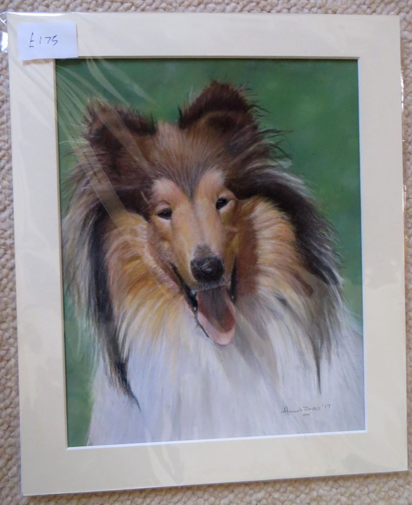 "ROUGH COLLIE LASSIE ORIGINAL PASTEL PAINTING PET DOG PORTRAIT ART 10"" X 12"""