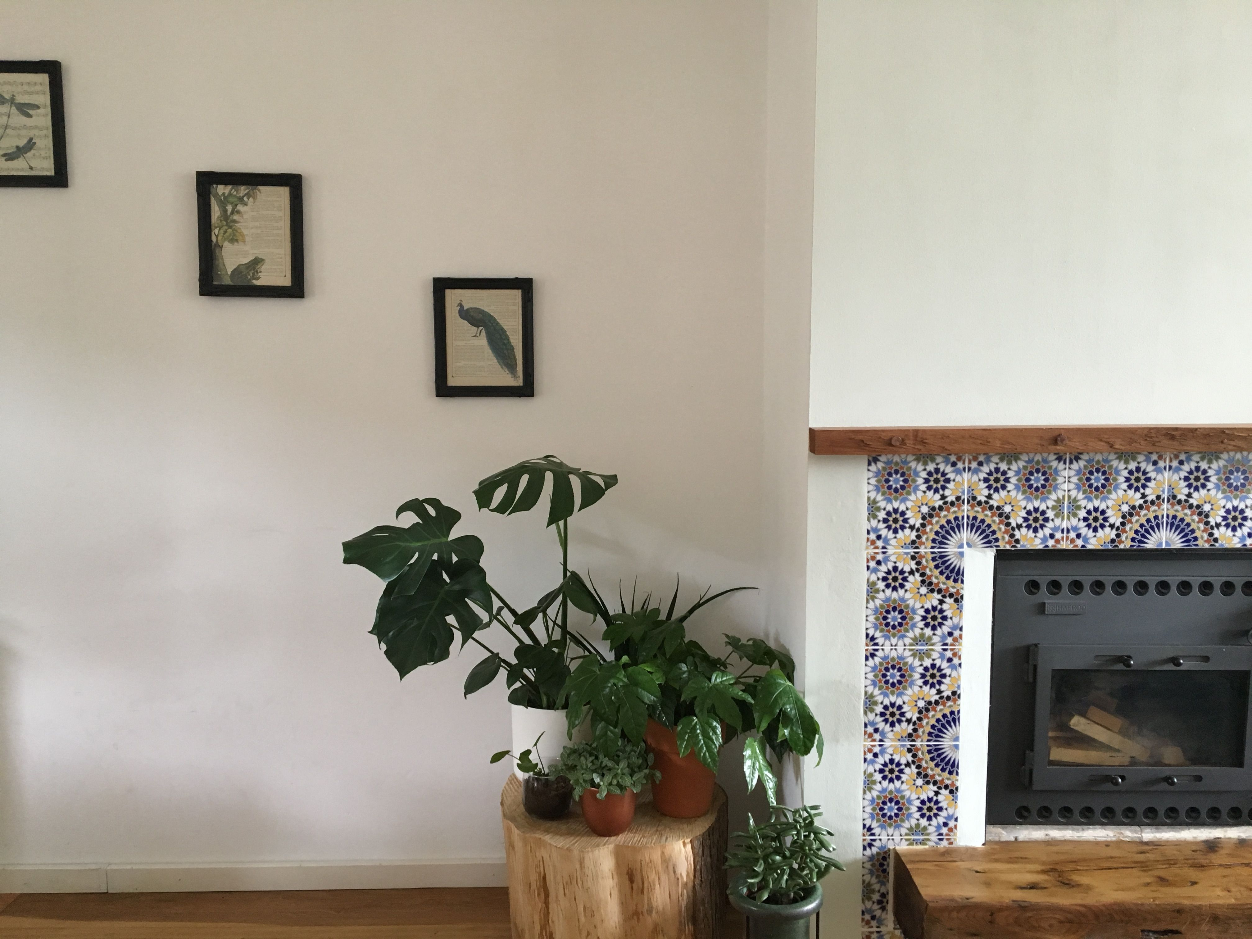 Fireplace and plants woonkamer pinterest