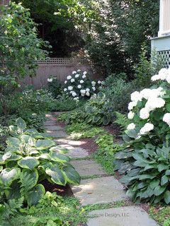 Shade Garden - traditional - landscape - bridgeport - by Austin Ganim Landscape Design, LLC