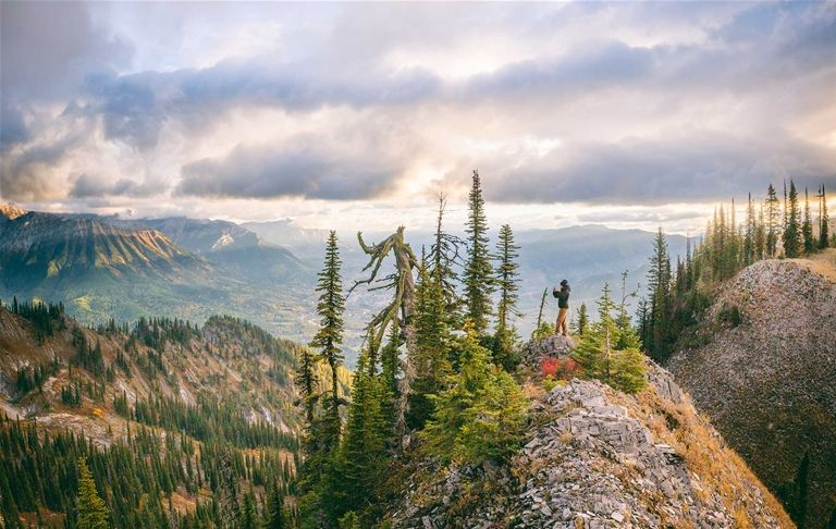 Image result for Summer in Fernie Canada