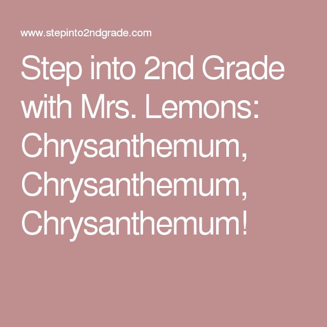 Step into 2nd Grade with Mrs. Lemons: Chrysanthemum, Chrysanthemum, Chrysanthemum!