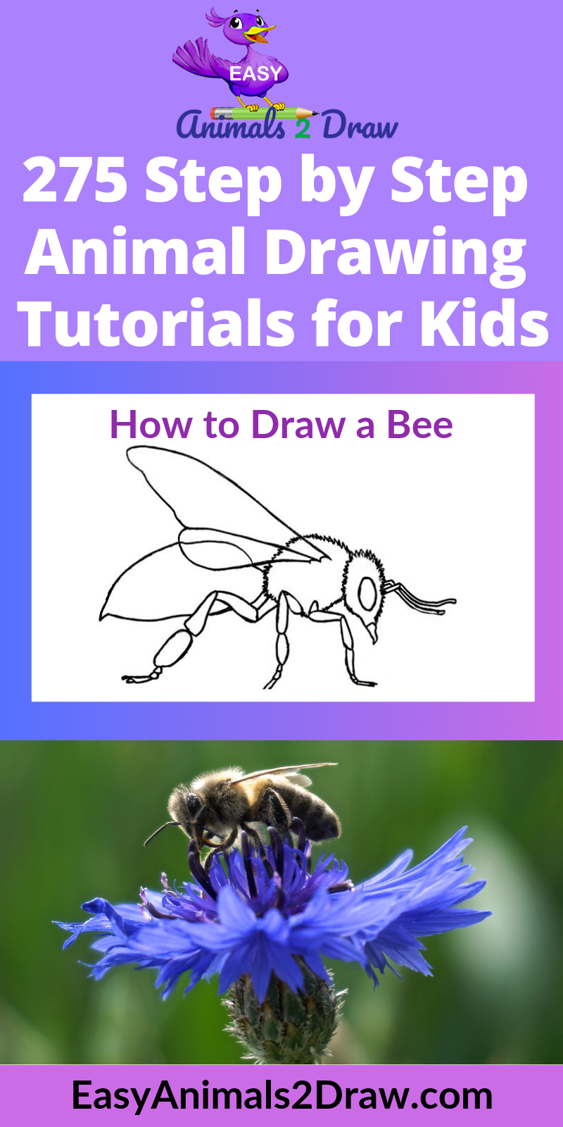 How to draw a Bee step by step Animal drawings, Drawings