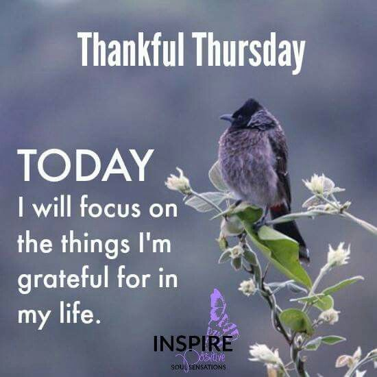 Thankful Thursday Inspirational Quotes: Thankful Thursday Positive Quote Good Morning Thursday