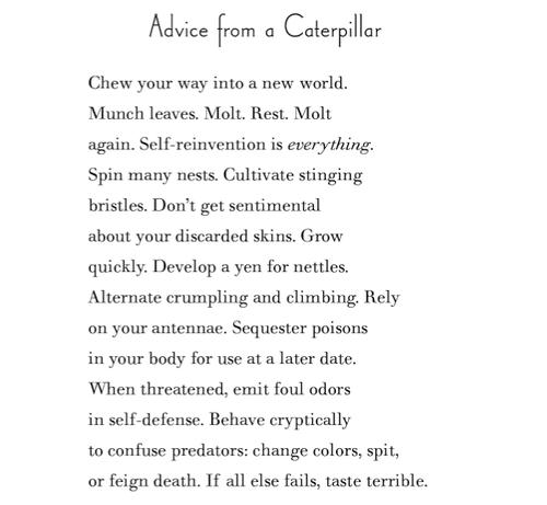 amy gerstler advice from a caterpillar