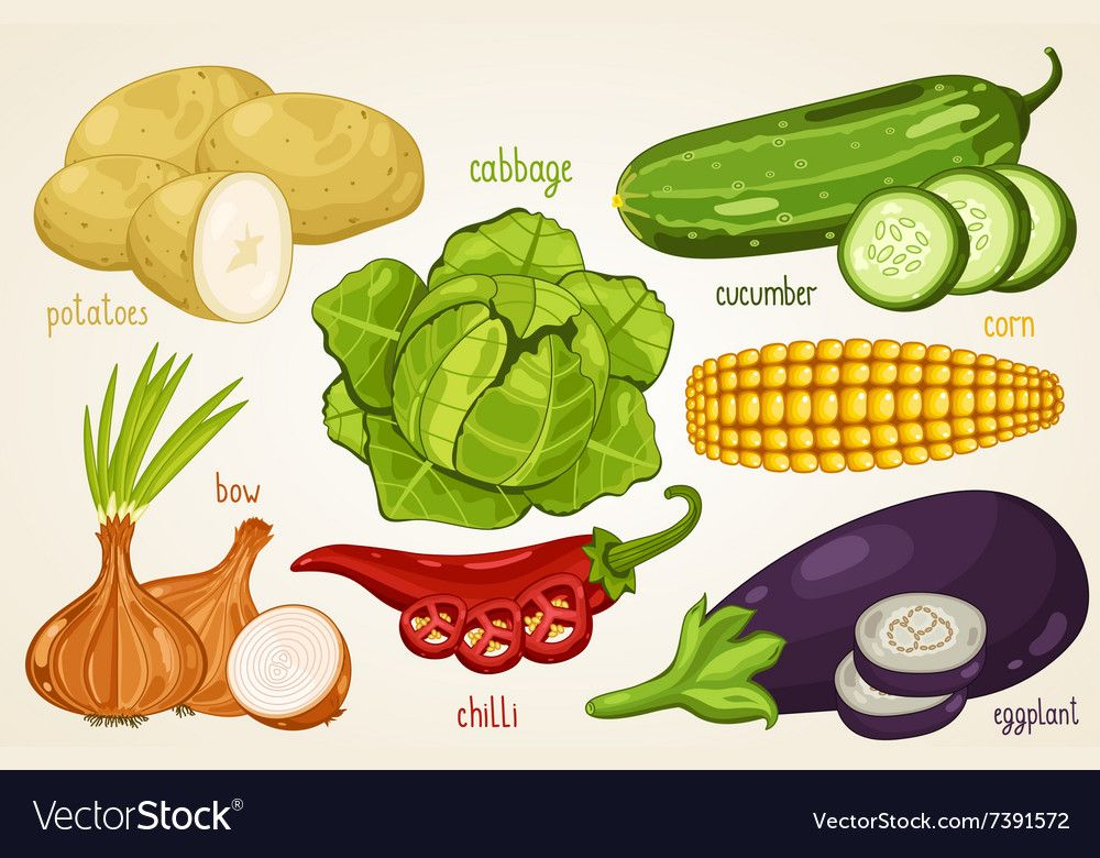 Vegetables Mix Organic Food Farm Food Vector Image On Vectorstock