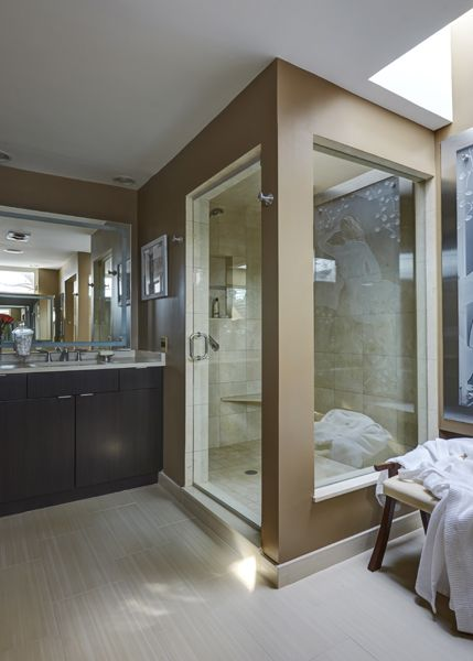 Catherine Schager Designs Northbrook IL Bathroom Remodel - Bathroom remodeling northbrook