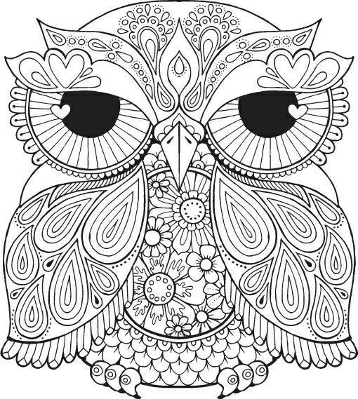 Sundial Drawing Painting Coloring Kind Owl Bellisima Barn Owls Embroidery