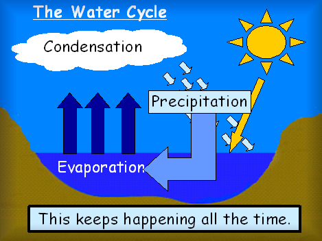 Here's a nice PPT on the water cycle. | Water/Water Cycle ...