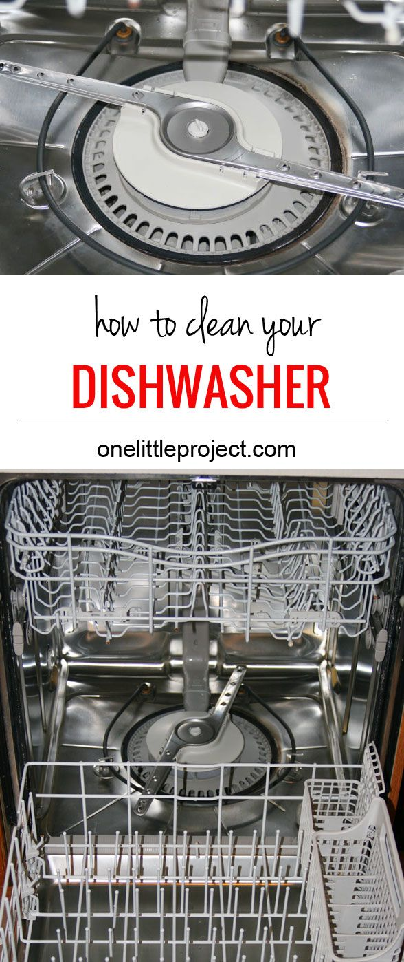 How To Clean The Dishwasher Drain How To Clean A Dishwasher Dishwashers Cleaning And Dishes