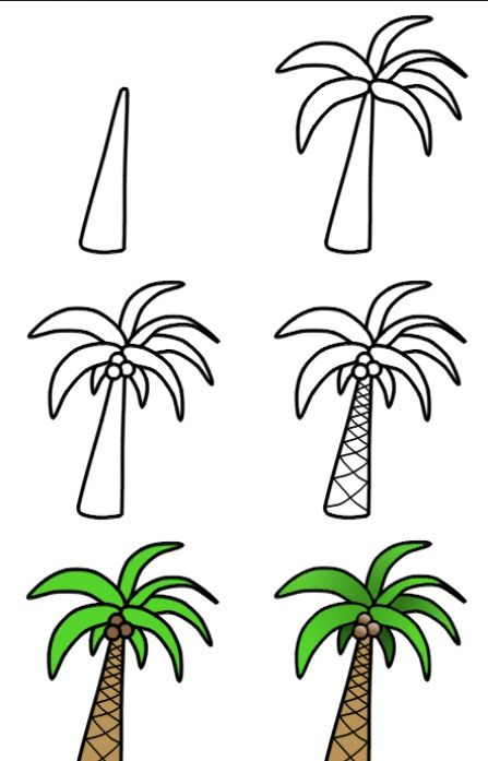 Como Dibujar Una Palmera Palm Tree Drawing Tree Drawing Simple Cartoon Palm Tree