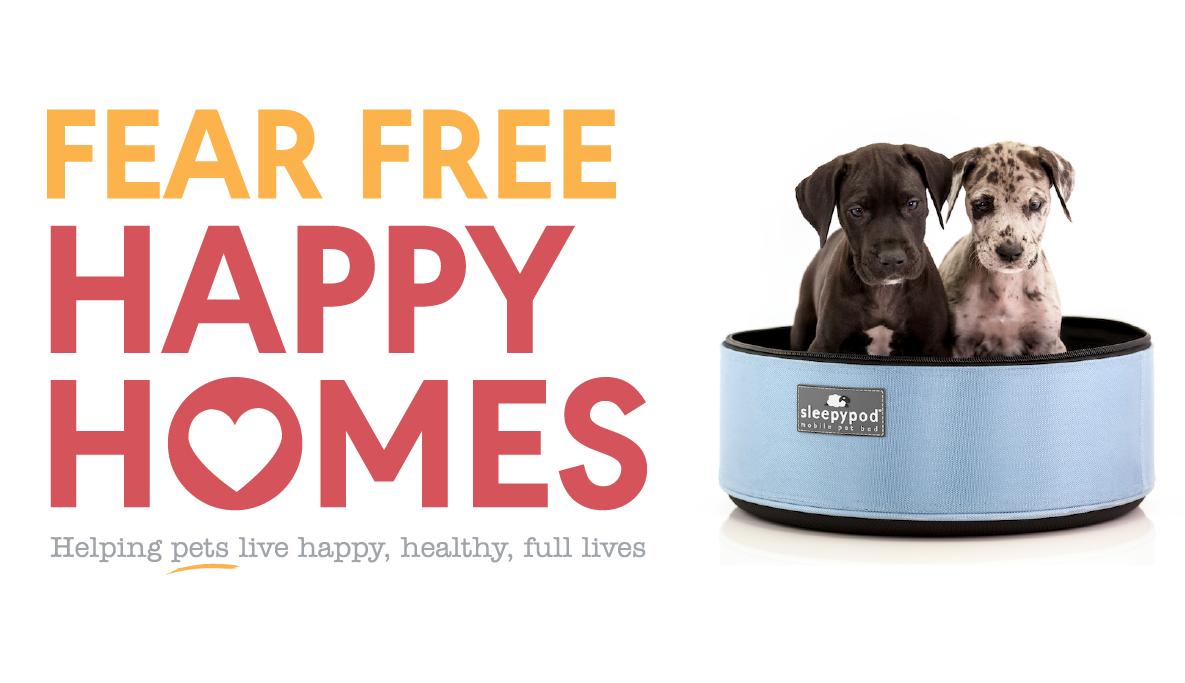 Sleepypod Sleepypod® Dog bowls, Pets, Live happy