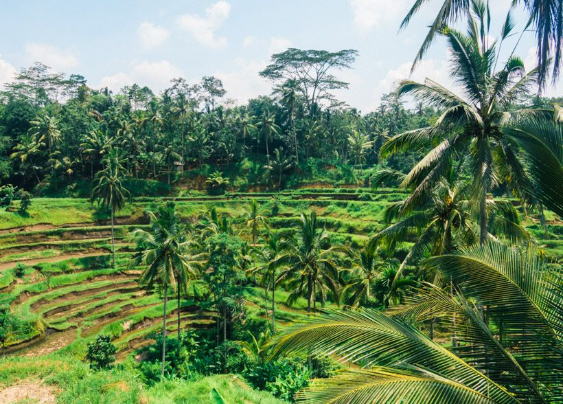 how to get from ubud to lombok