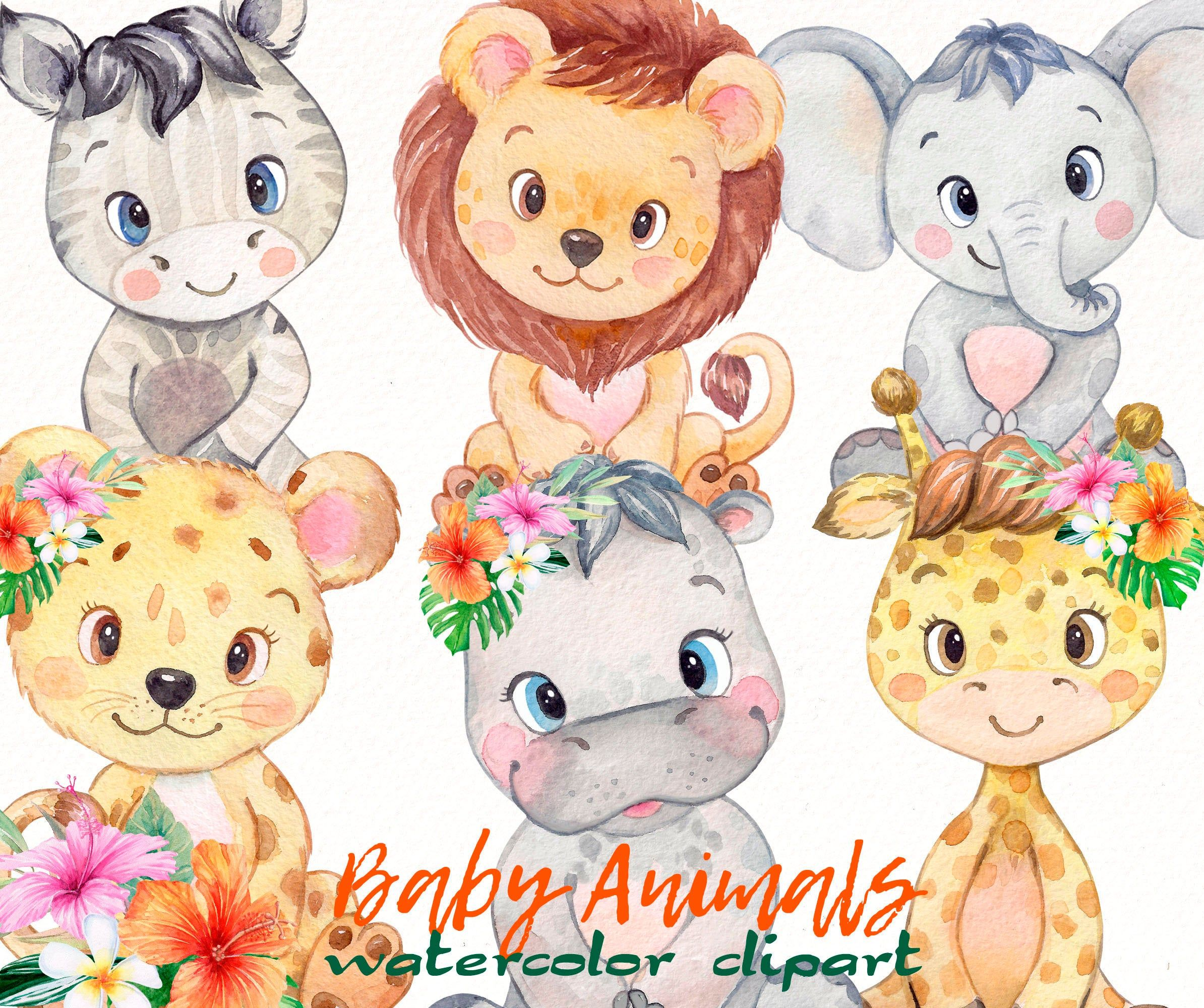 Safari Animals Clipart Watercolor Baby Jungle Elephant Zebra Hippo Lion Leopard Giraffe Tropical Baby Shower Birthday Party Set Png In 2021 Animal Clipart Clip Art Animals