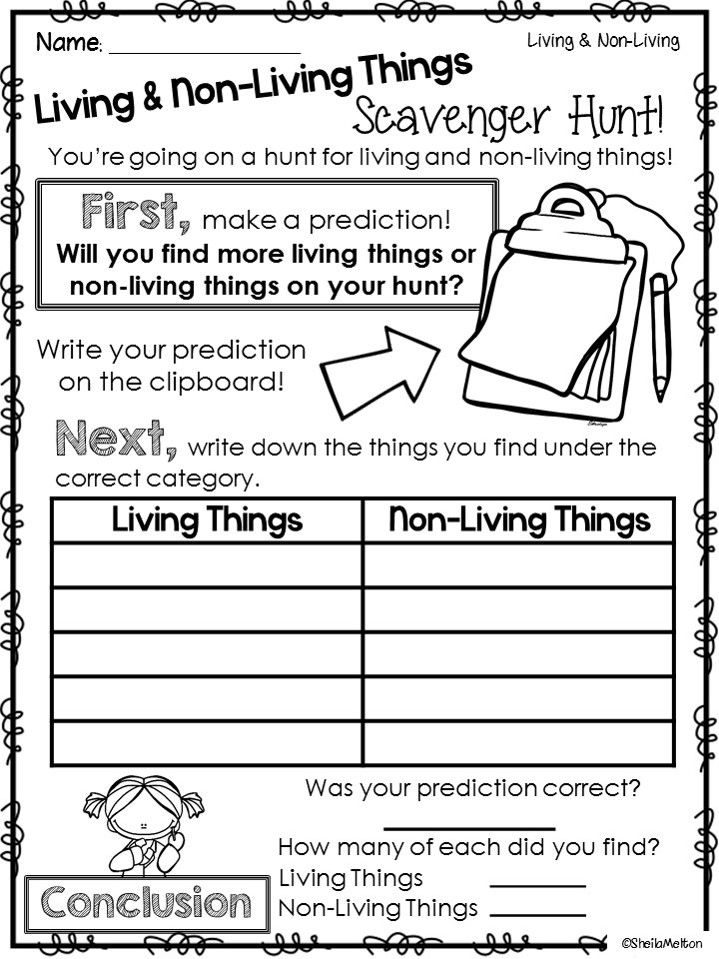 Living and NonLiving Things 1st grade science, First