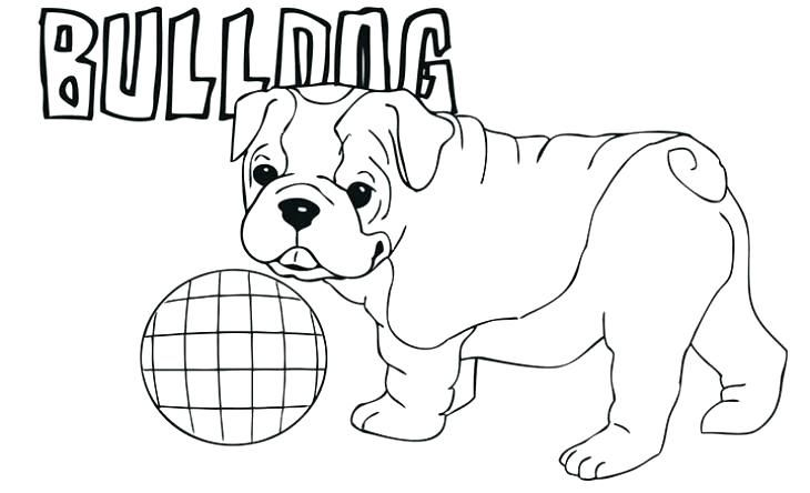 Bulldog Coloring Pages Animal Coloring Pages Puppy Coloring