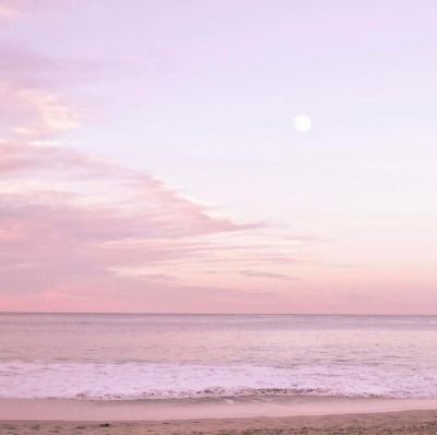 See more ideas about dried flowers, flowers, flower aesthetic. pink sky   Tumblr   Sky aesthetic, Pastel pink aesthetic