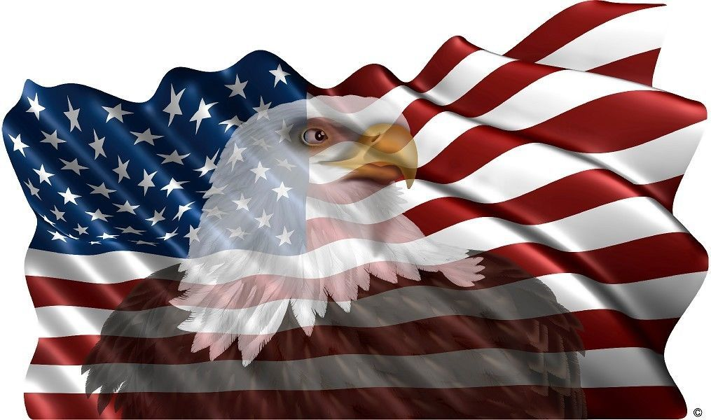 Camping Murals American Flag Eagle Vinyl Graphic Decal