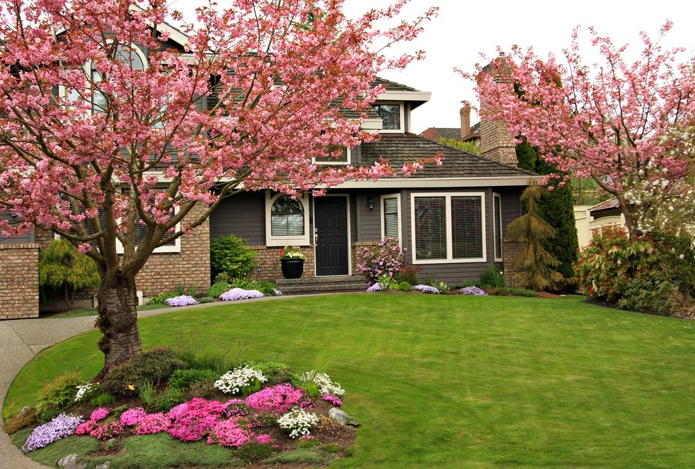 Front Yard Tree Ideas Part - 29: First Person: Refinancing To Save $51,000 And Pay Off Our Mortgage Early. Front  YardsFront ...