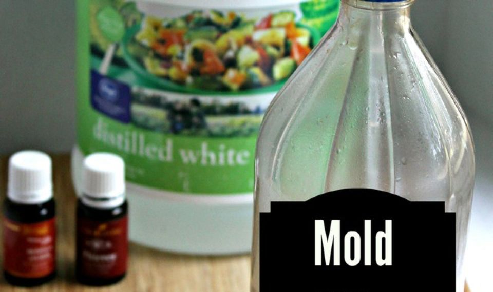 DIY Mold Removing Spray (Detox Your Home Series) Diy