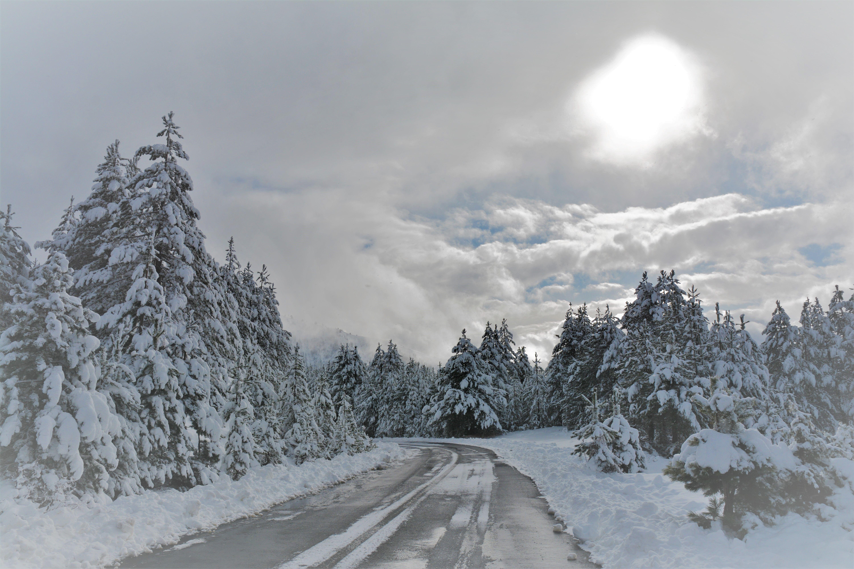 Vasilitsa to Konitsa   first year's snowfall 2017