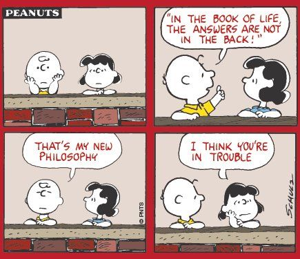Pin By Susan Meisner On Charles M Schulz Philosophy Book Of Life Cool Cartoons Cartoon Strip