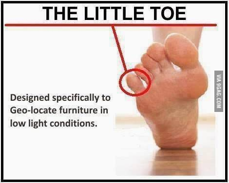 Even the little toe has a purpose - 9GAG. Ow!