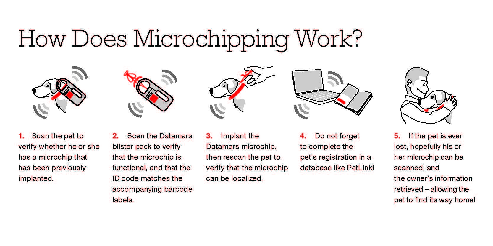 Microchips How They Work & Why Your Pet Should Have One