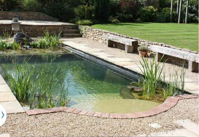 Converted traditional pool to natural swimming pool