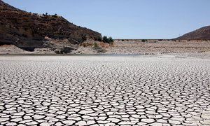 Current Mediterranean drought is likely the worst in 900 years, probably due to human-caused intensification. The authors use a powerful database called the Old World Drought Atlas to look back in time prior to modern instruments. This atlas is a collection of tree-ring data that measures drought using the Palmer Drought Severity Index. Within the Mediterranean region, there are 106 different tree-ring datasets. These datasets go back various lengths of time but since 1100 CE, the region is…