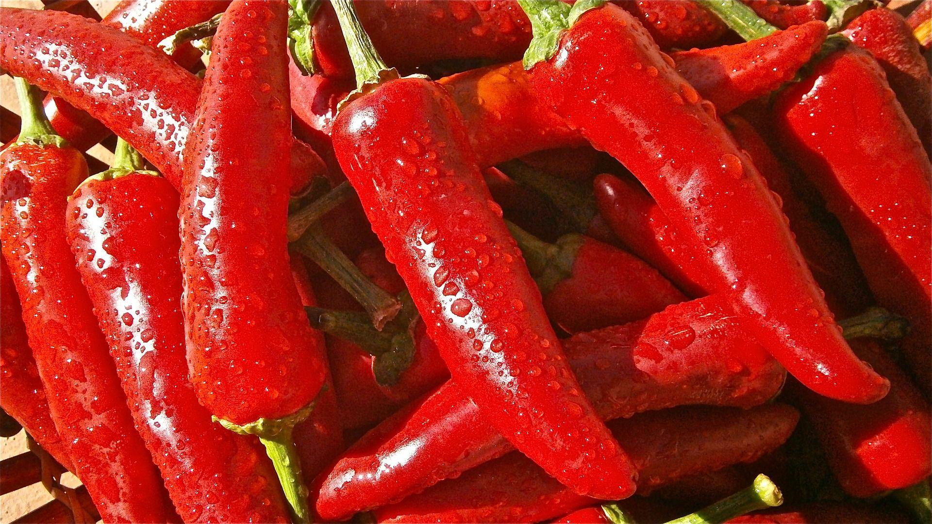 12 Alimentos Que Aceleram O Metabolismo E Ajudam A Perder Peso