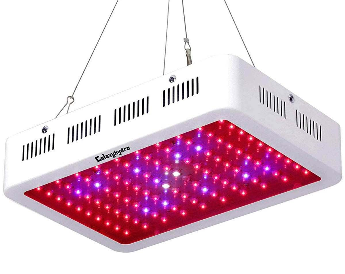 Roleadro Galaxyhydro 1000w Led Grow Light Review Best Led Grow Lights Led Grow Lights Led Grow