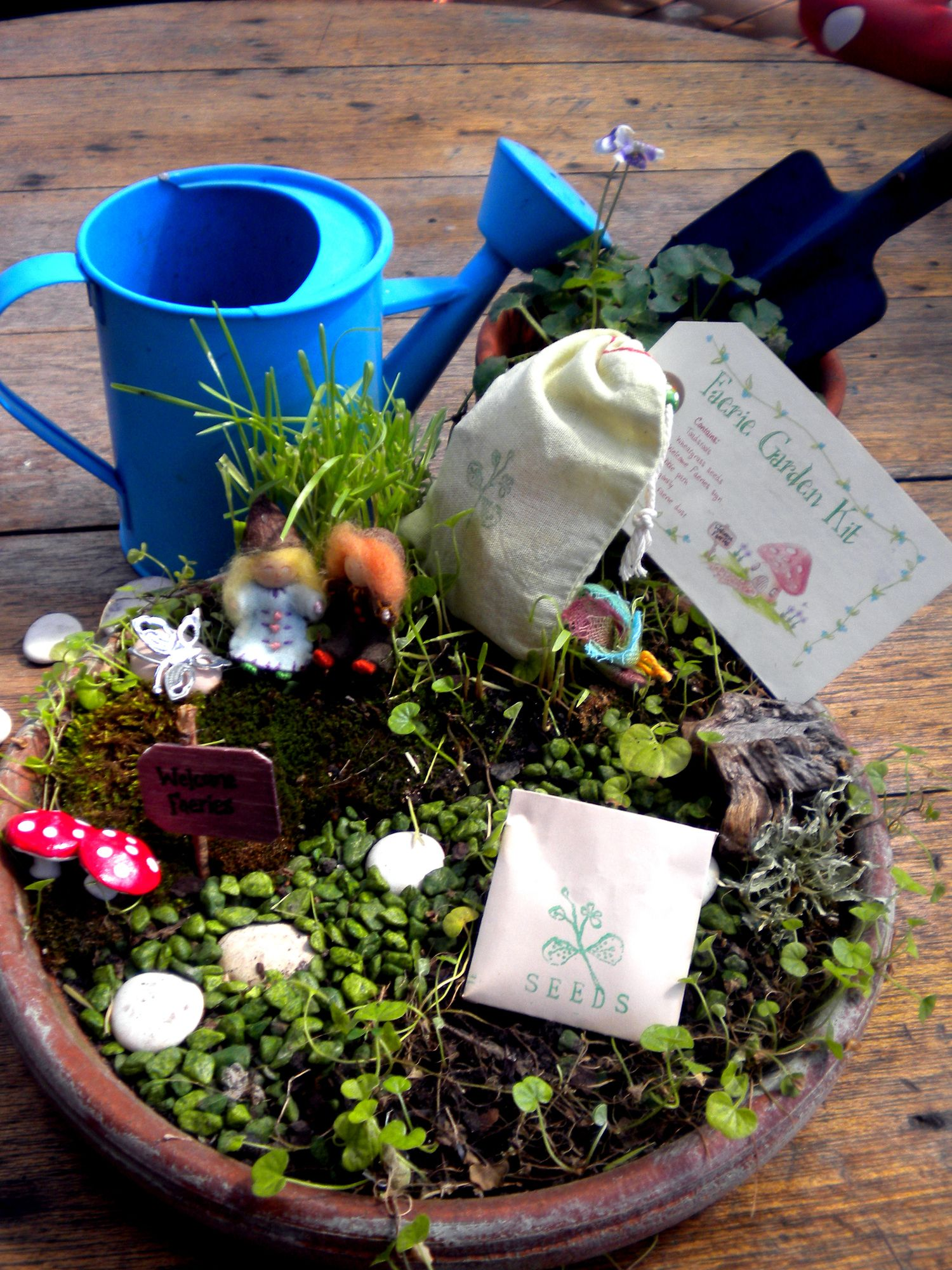 Small Of Kids Fairy Garden Kit