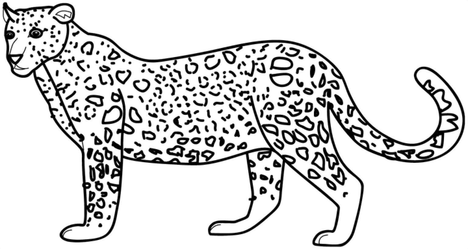 Dibujo Colorear De Leopardo 6 Coloring Pages Coloring Pictures Animal Coloring Pages