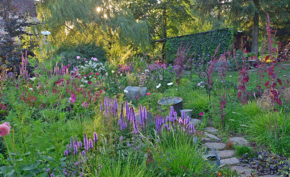 15 Tipps Fur Mehr Natur Im Garten Naturnaher Garten Naturgarten Garten Anlegen