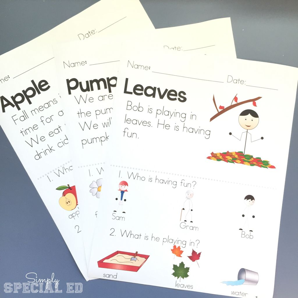 Picture Comprehension Seasons For Students With Autism