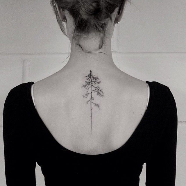 Pin By Andrew Wagner On Tattoo Designs: Pin By Tazia Wagner On Tattoos