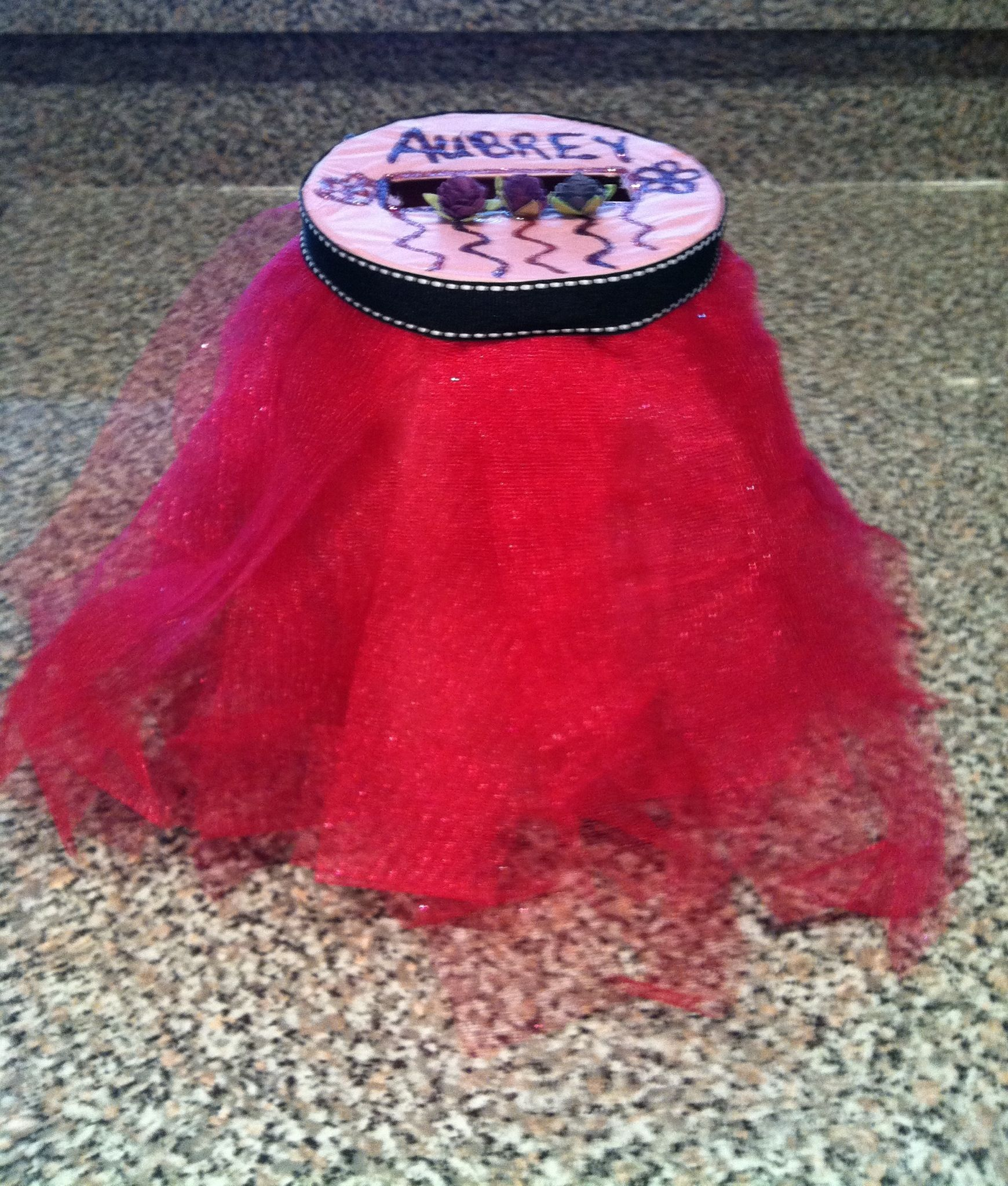 My daughters Valentines box for school. It is a tutu!
